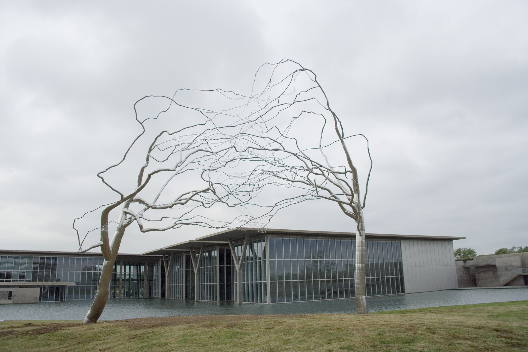roxy paine conjoined essay Roxy paine sculpture of conjoined trees at the fort worth museum of modern art  is a beautiful example of how a new material can change our perspective of a.