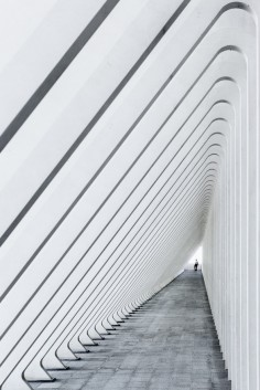 GUILLEMINS TRAIN STATION, LIEGE, BY SANTIAGO CALATRAVA