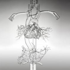 GARY FARLOW MEDICAL GLASS
