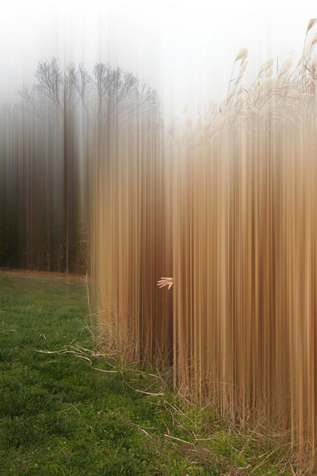 ELLEN JANTZEN DISTURBING THE SPIRITS