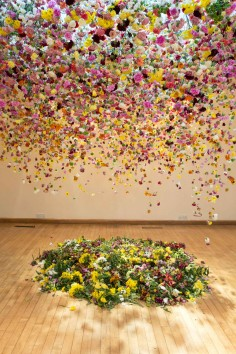 Rebecca Louise Law  The Hated Flower