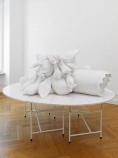 COSIMA VON BONIN THE TABLE