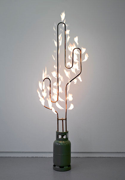 Marc Bijl  Burning Cactus