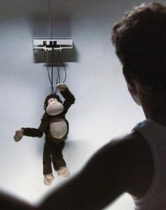 Ralph Kistler & Jan M. Sieber  Monkey Business