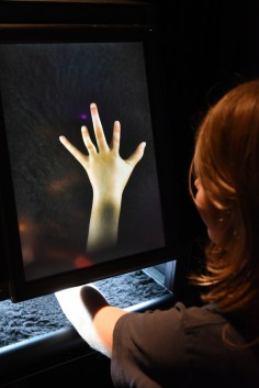 Golan Levin, Chris Sugrue, and Kyle McDonald, The Augmented Hand Series