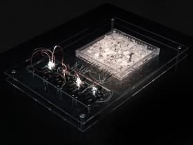 Ralf Baecker Irrational Computing