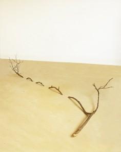 alexandre brandao  Branch