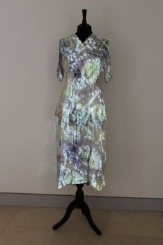 Anna Dumitriu  Bacteria Dress