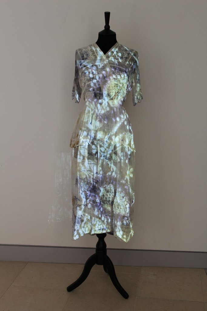 Anna Dumitriu  Bacteria Dress