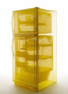 do ho suh   specimen series refrigerator copy