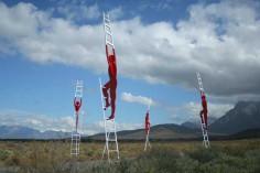 Strijdom van der Merwe Reaching for the sky