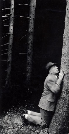 ANNA AND BERNHARD BLUME Im Wald