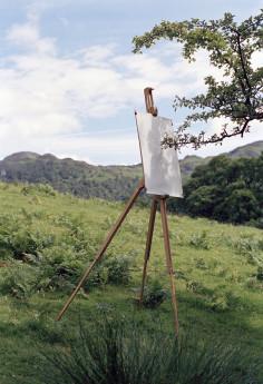 Tim Knowles Tree Drawings