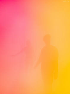Ann Veronica Janssens States of Mind